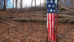 Sign On: Petition DRBC on PennEast Pipeline—  Regulate Entire Project & Prohibit Tree Clearing!19